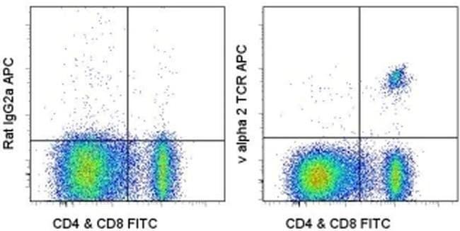 TCR V alpha 2 Rat anti-Mouse, APC, Clone: B20.1, eBioscience ::
