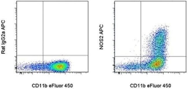 iNOS Rat anti-Mouse, APC, Clone: CXNFT, eBioscience™ 100 μg; APC iNOS Rat anti-Mouse, APC, Clone: CXNFT, eBioscience™
