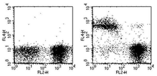 TER-119 Rat anti-Mouse, APC, Clone: TER-119, eBioscience™ 50 μg; APC TER-119 Rat anti-Mouse, APC, Clone: TER-119, eBioscience™