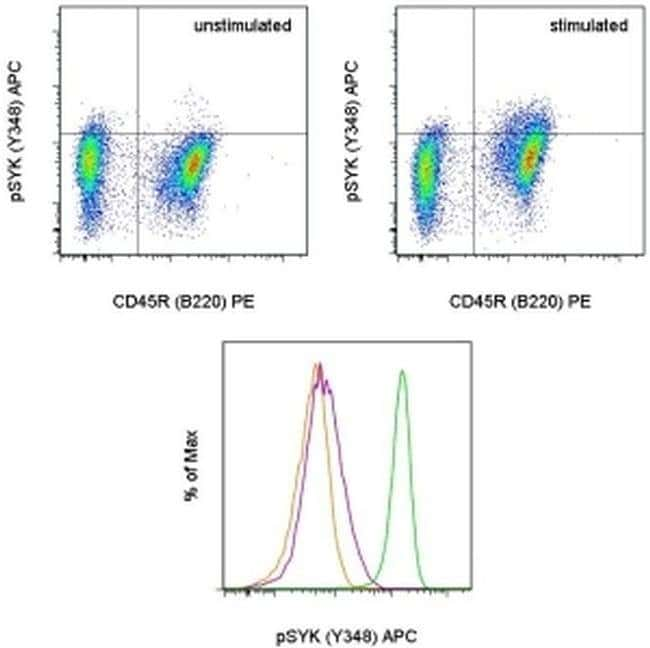 Phospho-Syk (Tyr348) Mouse anti-Human, Mouse, APC, Clone: moch1ct, eBioscience™ 100 Tests; APC Phospho-Syk (Tyr348) Mouse anti-Human, Mouse, APC, Clone: moch1ct, eBioscience™