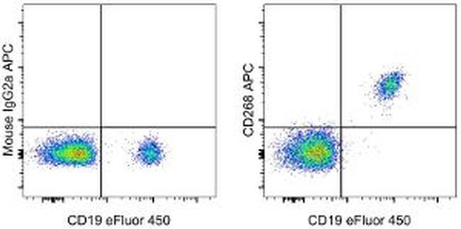 CD268 (BAFF Receptor) Mouse anti-Human, APC, Clone: 8A7, eBioscience ::