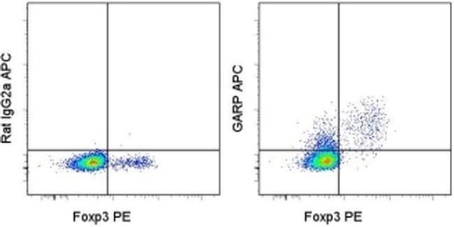 GARP Rat anti-Mouse, APC, Clone: YGIC86, eBioscience ::