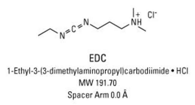 Thermo Scientific™Pierce™ EDC Cross-Linker: Cross-Linking-Reagenzien Cross-Linking, Markierung und Proteinmodifikation