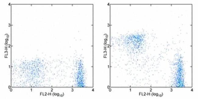 CD3e Armenian Hamster anti-Mouse, PE-Cyanine7, Clone: 145-2C11, eBioscience
