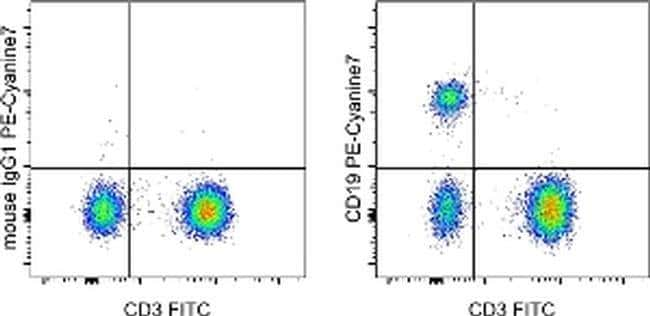 CD19 Mouse anti-Human, PE-Cyanine7, Clone: HIB19, eBioscience ::