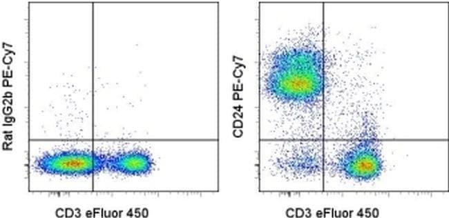CD24 Rat anti-Mouse, PE-Cyanine7, Clone: M1/69, eBioscience ::