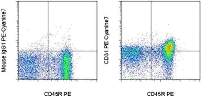 CD31 (PECAM-1) Mouse anti-Rat, PE-Cyanine7, Clone: TLD-3A12, eBioscience