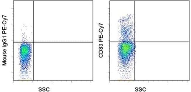 CD83 Mouse anti-Human, PE-Cyanine7, Clone: HB15e, eBioscience™ 25 Tests; PE-Cyanine7 CD83 Mouse anti-Human, PE-Cyanine7, Clone: HB15e, eBioscience™