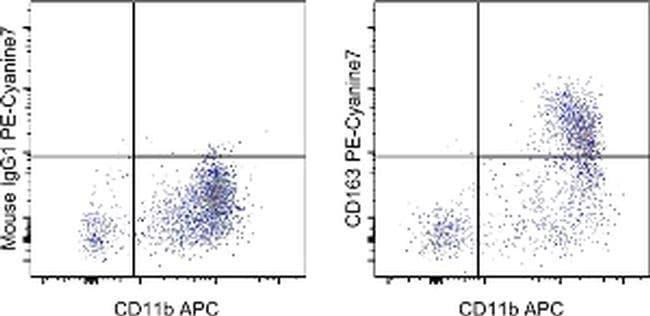 CD163 Mouse anti-Human, PE-Cyanine7, Clone: eBioGHI/61 (GHI/61), eBioscience