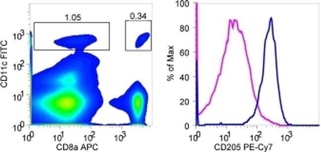 CD205 Rat anti-Mouse, PE-Cyanine7, Clone: 205yekta, eBioscience™ 25 Tests; PE-Cyanine7 CD205 Rat anti-Mouse, PE-Cyanine7, Clone: 205yekta, eBioscience™