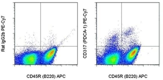 CD317 (BST2, PDCA-1) Rat anti-Mouse, PE-Cyanine7, Clone: eBio927, eBioscience
