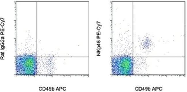 CD335 (NKp46) Rat anti-Mouse, PE-Cyanine7, Clone: 29A1.4, eBioscience™ 25 μg; PE-Cyanine7 CD335 (NKp46) Rat anti-Mouse, PE-Cyanine7, Clone: 29A1.4, eBioscience™