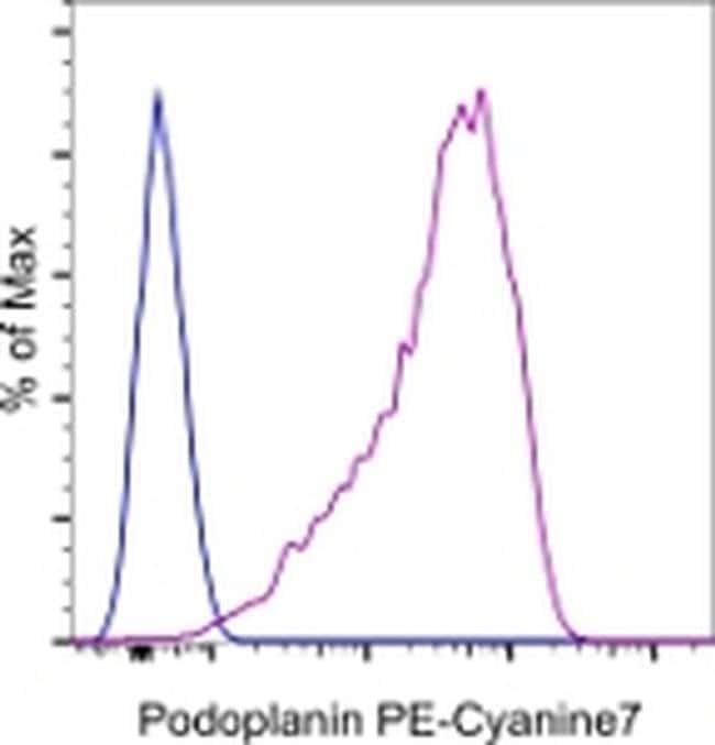 Podoplanin Syrian Hamster anti-Mouse, PE-Cyanine7, Clone: eBio8.1.1 (8.1.1), eBioscience™ 25 μg; PE-Cyanine7 Podoplanin Syrian Hamster anti-Mouse, PE-Cyanine7, Clone: eBio8.1.1 (8.1.1), eBioscience™
