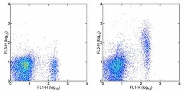 FR4 Rat anti-Mouse, PE-Cyanine7, Clone: eBio12A5, eBioscience 25 μg;