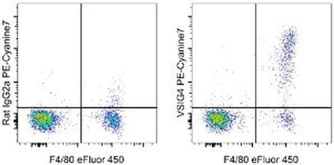 VSIG4 Rat anti-Mouse, PE-Cyanine7, Clone: NLA14, eBioscience ::