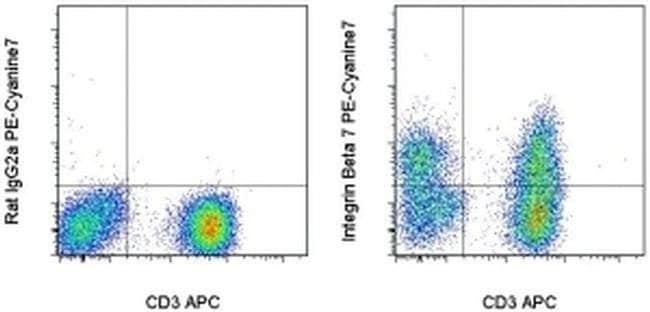 Integrin beta 7 Rat anti-Human, Mouse, PE-Cyanine7, Clone: FIB504, eBioscience