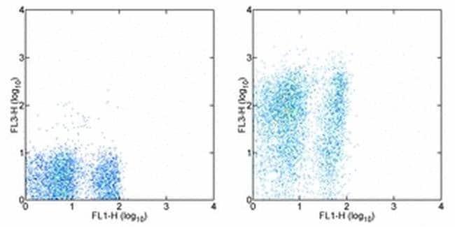 Ly-6A/E (Sca-1) Rat anti-Mouse, PE-Cyanine7, Clone: D7, eBioscience ::