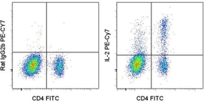 IL-2 Rat anti-Mouse, PE-Cyanine7, Clone: JES6-5H4, eBioscience™ 25 μg; PE-Cyanine7 IL-2 Rat anti-Mouse, PE-Cyanine7, Clone: JES6-5H4, eBioscience™