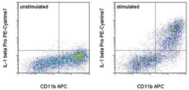 IL-1 beta (Pro-form) Rat anti-Mouse, PE-Cyanine7, Clone: NJTEN3, eBioscience™ 25 μg; PE-Cyanine7 IL-1 beta (Pro-form) Rat anti-Mouse, PE-Cyanine7, Clone: NJTEN3, eBioscience™