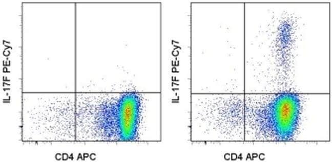 IL-17F Rat anti-Human, PE-Cyanine7, Clone: SHLR17, eBioscience™ 100 Tests; PE-Cyanine7 IL-17F Rat anti-Human, PE-Cyanine7, Clone: SHLR17, eBioscience™