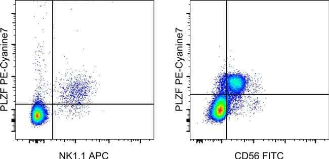 PLZF Armenischer Hamster Anti-Human, PE-Cyanin7, Klon: 9E12, eBioscience™ 25 μg; PE-Cyanine7 PLZF Armenischer Hamster Anti-Human, PE-Cyanin7, Klon: 9E12, eBioscience™