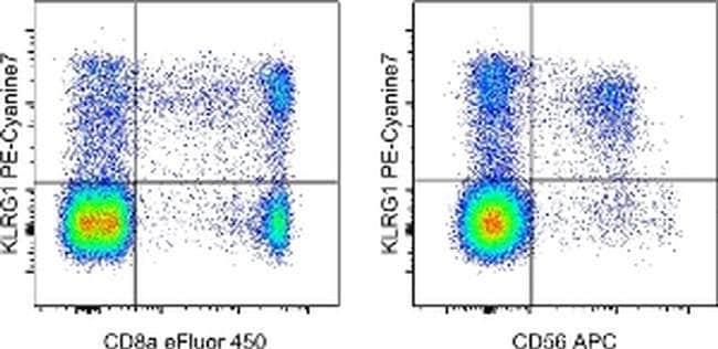 KLRG1 Mouse anti-Human, PE-Cyanine7, Clone: 13F12F2, eBioscience ::