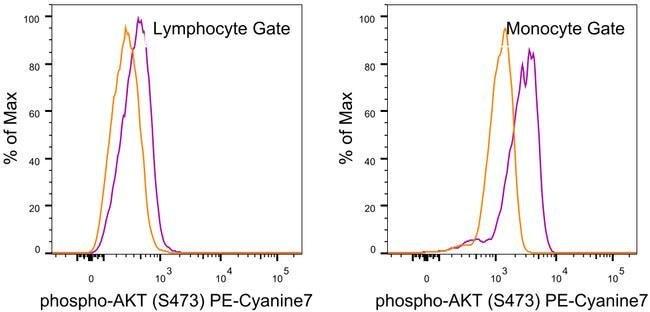 Phospho-AKT1 (Ser473) Mouse anti-Human, Mouse, PE-Cyanine7, Clone: SDRNR, eBioscience™
