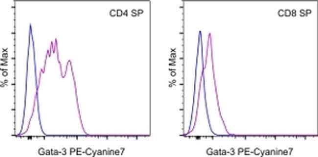 Gata-3 Rat anti-Human, Mouse, Porcine, Rhesus Monkey, PE-Cyanine7, Clone: