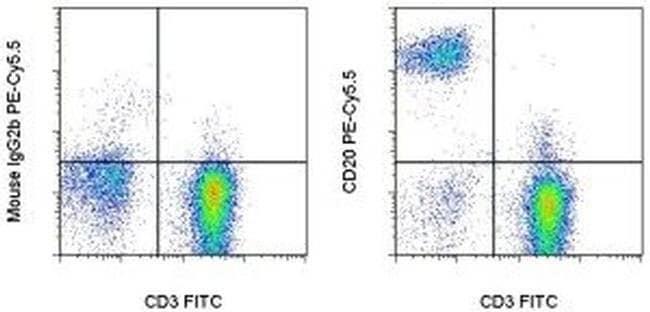 CD20 Mouse anti-Human, PE-Cyanine5.5, Clone: 2H7, eBioscience™ 100 Tests; PE-Cyanine5.5 CD20 Mouse anti-Human, PE-Cyanine5.5, Clone: 2H7, eBioscience™