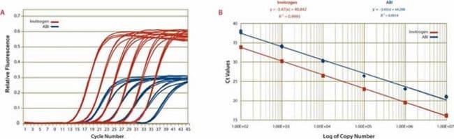 SuperScript™, Platinum™, SYBR™SuperScript™ III Platinum™ SYBR™ Green One-Step qPCR Kit w/ROX: PCR Reagents and Kits PCR and qPCR