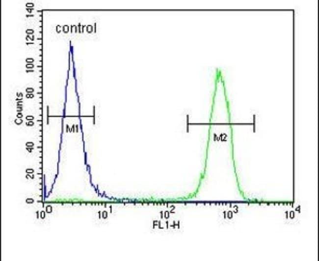 MARCH5 Rabbit anti-Human, Mouse, Polyclonal, Invitrogen 400 µL; Unconjugated