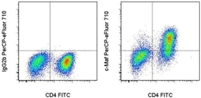 c-MAF Mouse anti-Human, Mouse, PerCP-eFluor™ 710, Clone: sym0F1, eBioscience™ 100 Tests; PerCP-eFluor™ 710 c-MAF Mouse anti-Human, Mouse, PerCP-eFluor™ 710, Clone: sym0F1, eBioscience™