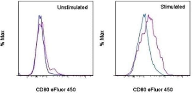 CD80 (B7-1) Armenian Hamster anti-Canine, Mouse, Porcine, eFluor(T) 450,