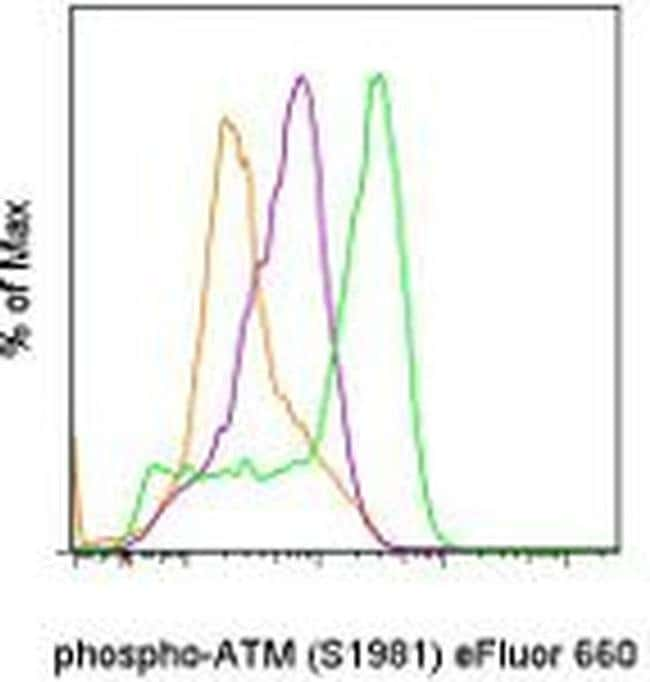 Phospho-ATM (Ser1981), eFluor 660, clone: 10H11.E12, eBioscience™ 25 Tests; eFluor 660 Primary Antibodies An to Aq