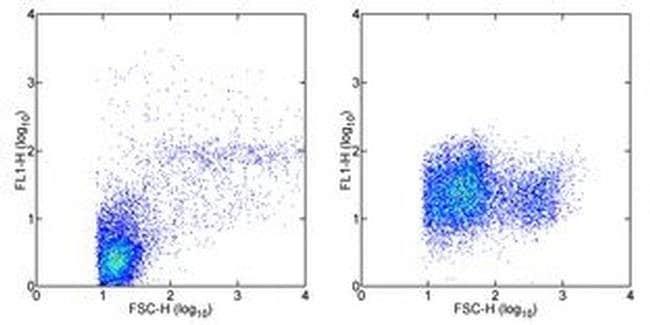 CD107a (LAMP-1) Mouse anti-Human, Alexa Fluor(T) 488, Clone: eBioH4A3,