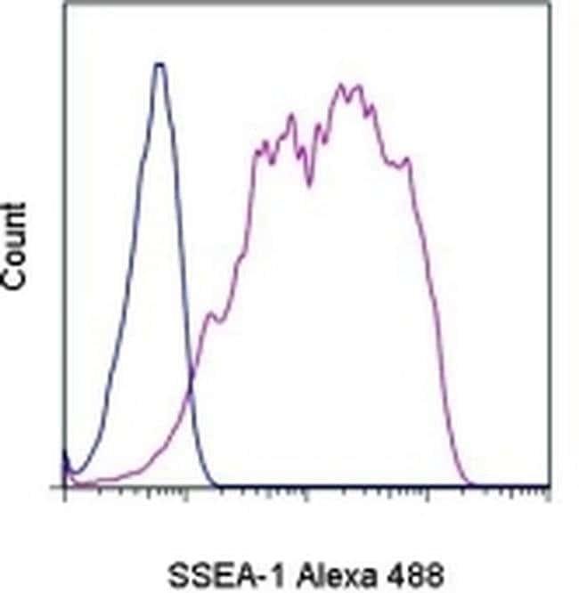 SSEA1 Mouse anti-Human, Mouse, Alexa Fluor™ 488, Clone: eBioMC-480 (MC-480), eBioscience™ 100 Tests; Alexa Fluor™ 488 SSEA1 Mouse anti-Human, Mouse, Alexa Fluor™ 488, Clone: eBioMC-480 (MC-480), eBioscience™