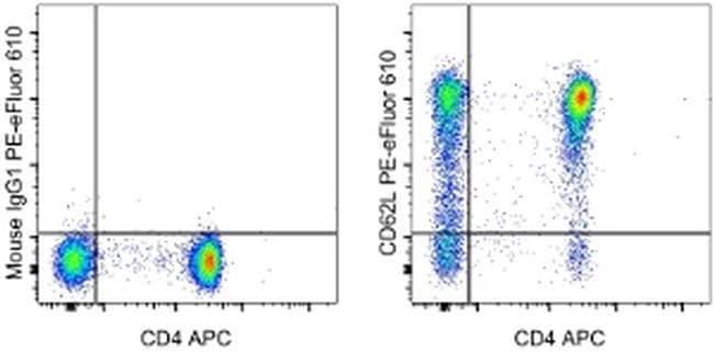 CD62L (L-Selectin) Mouse anti-Human, PE-eFluor® 610, Clone: DREG-56 (DREG56), eBioscience™ 100 Tests; PE-eFluor® 610 CD62L (L-Selectin) Mouse anti-Human, PE-eFluor® 610, Clone: DREG-56 (DREG56), eBioscience™