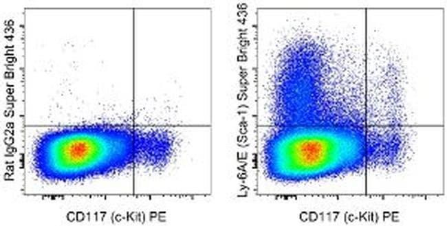 Ly-6A/E (Sca-1) Rat anti-Mouse, Super Bright 436, Clone: D7, eBioscience