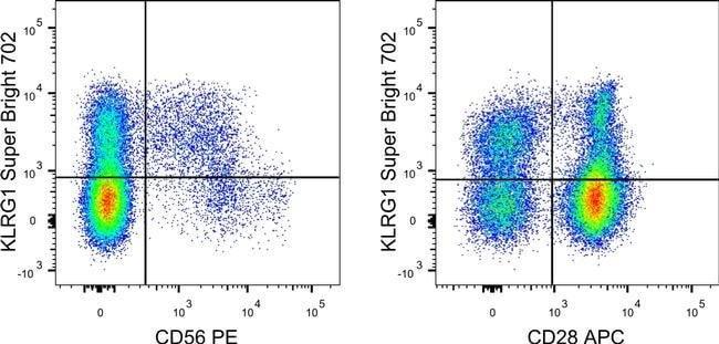 KLRG1 Mouse anti-Human, Super Bright 702, Clone: 13F12F2, eBioscience™ 100 Tests; Super Bright 702 KLRG1 Mouse anti-Human, Super Bright 702, Clone: 13F12F2, eBioscience™
