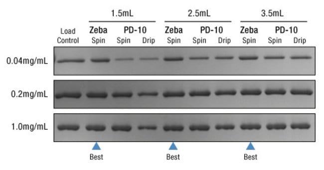 Thermo Scientific Zeba Micro Spin Desalting Columns, 7K MWCO, 75µL:Life