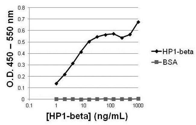 IgG (H+L) Goat anti-Mouse, Superclonal™ 1 mg; Unconjugated Sekundärantikörper Ziege Anti-Kaninchen