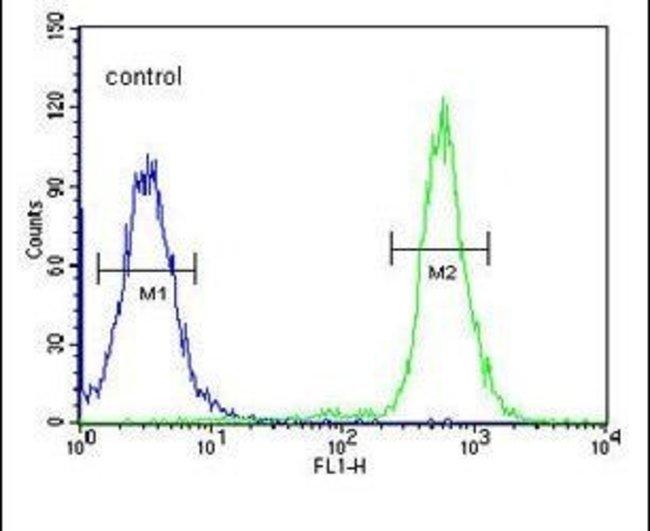 A2ML1 Rabbit anti-Human, Mouse, Polyclonal, Invitrogen 400 µL; Unconjugated