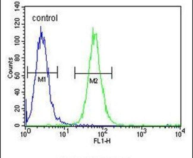 ABHEB Rabbit anti-Human, Polyclonal, Invitrogen 400 µL; Unconjugated