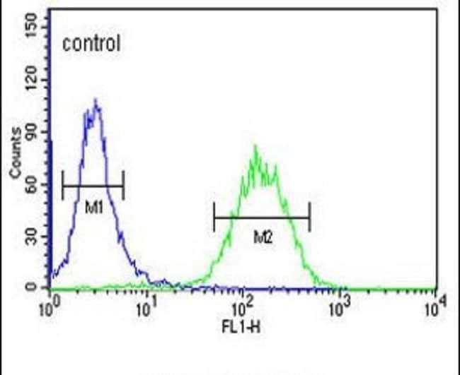 ACSBG2 Rabbit anti-Human, Mouse, Polyclonal, Invitrogen 400 µL; Unconjugated