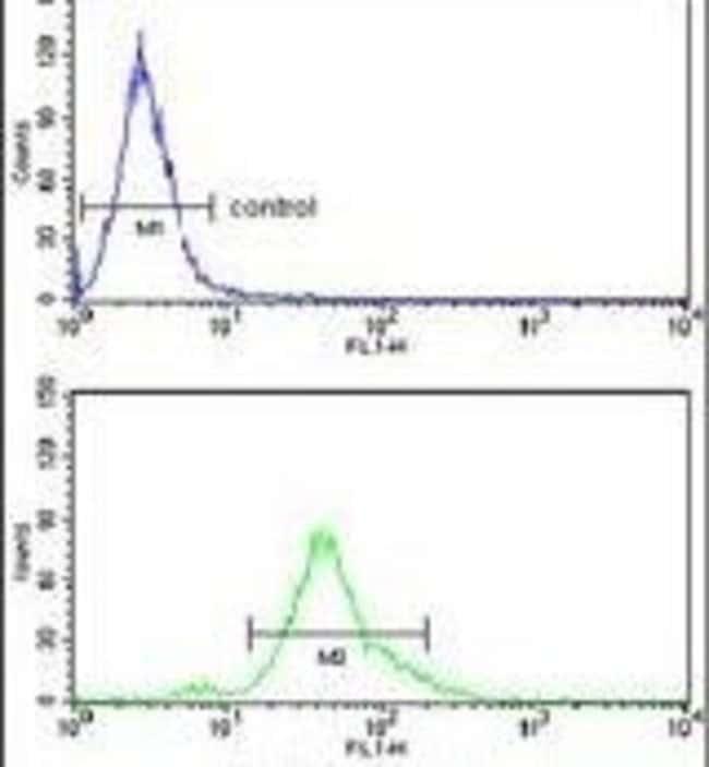 Acid Phosphatase 1 Rabbit anti-Human, Polyclonal, Invitrogen 400 µL;