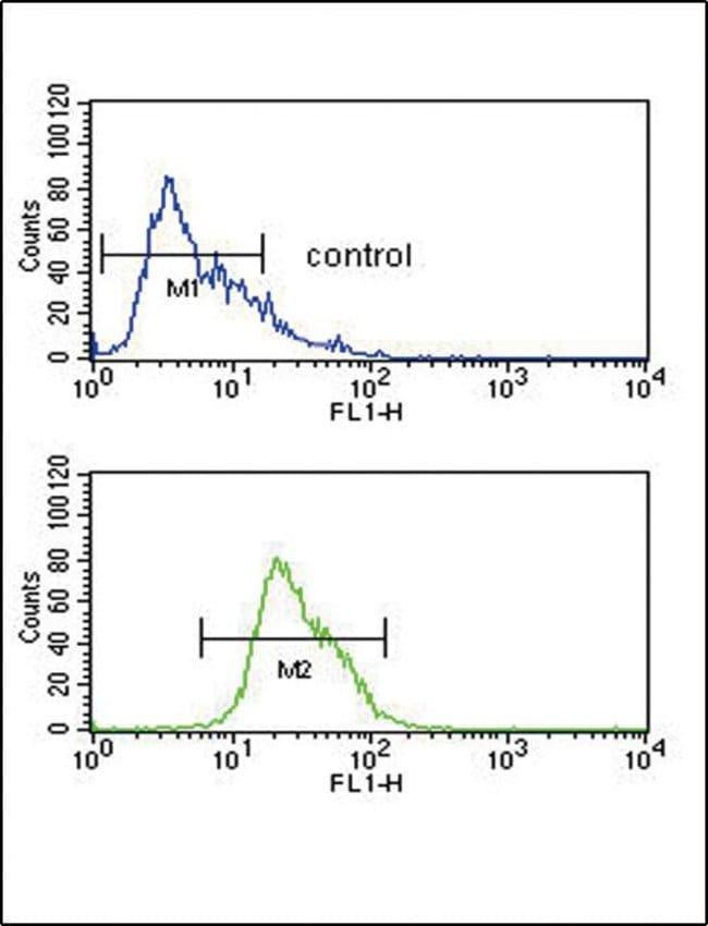 Alcohol Dehydrogenase 1C Rabbit anti-Human, Polyclonal, Invitrogen 400