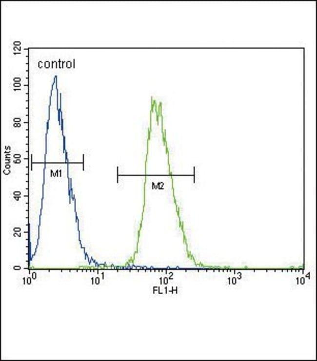 ADH4 Rabbit anti-Human, Mouse, Polyclonal, Invitrogen 400 µL; Unconjugated
