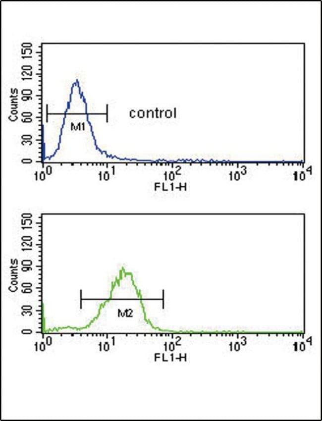 RAGE Rabbit anti-Human, Mouse, Polyclonal, Invitrogen 400 µL; Unconjugated