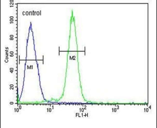 AGXT2 Rabbit anti-Human, Polyclonal, Invitrogen 400 µL; Unconjugated