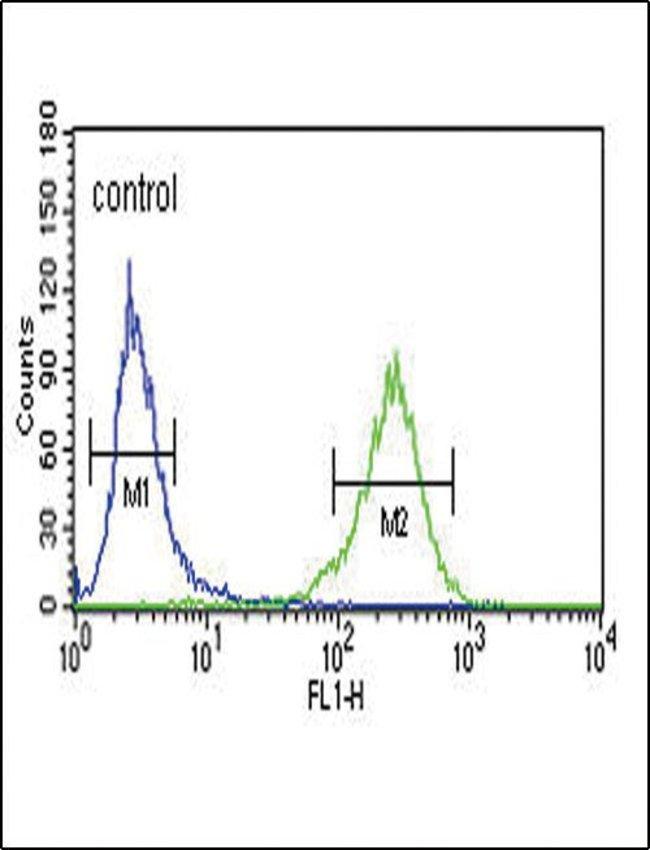 AHR Rabbit anti-Human, Mouse, Polyclonal, Invitrogen 400 µL; Unconjugated